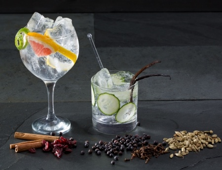 Gin Tonic Variationen